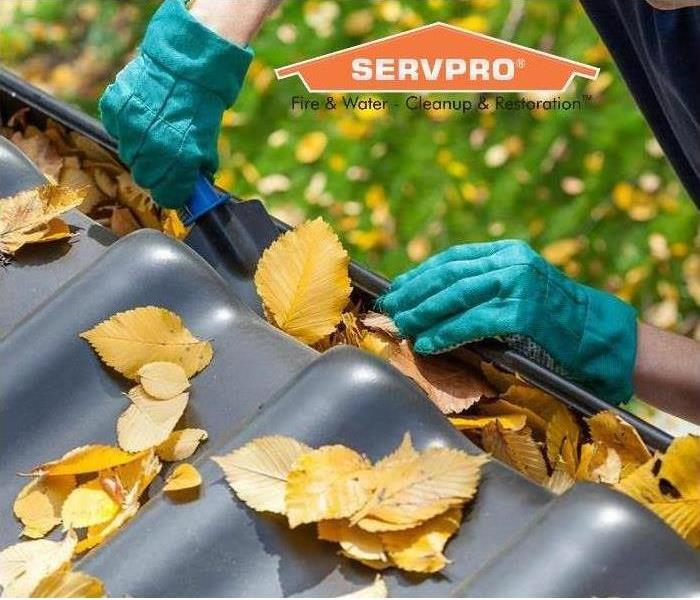 Cleaning Spring Home Maintenance Tips