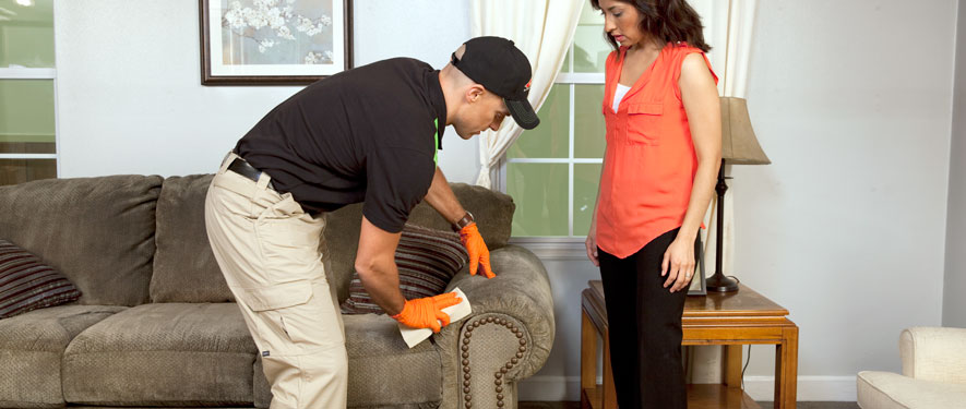 Duluth, GA carpet upholstery cleaning